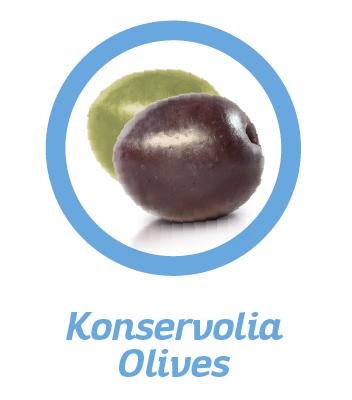 OLIVE-VARIETIES-KONSERVOLIA