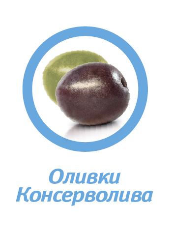 OLIVE VARIETIES-RU-03