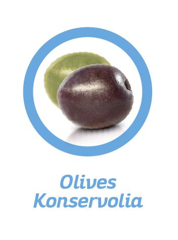 OLIVE-VARIETIES-FR-03